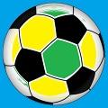 Fußball WM: Mein literarischer Anpfiff